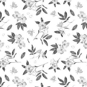 Noir wild rose - watercolor grey florals