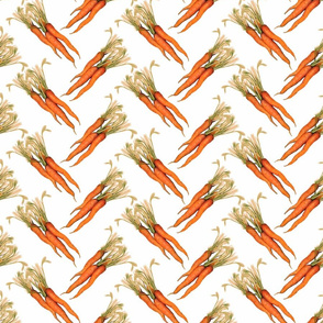 Step and repeat carrot CONSOLIDATEDWHT copy