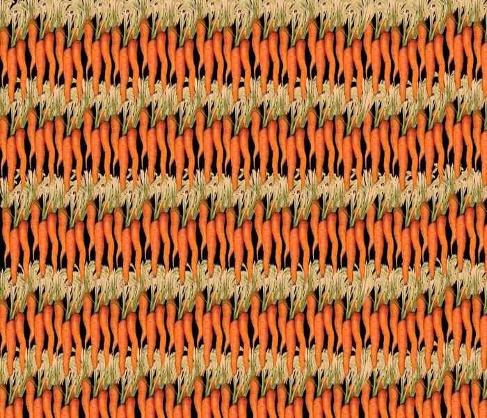 Carrot Curtain black 1820