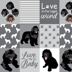 Custom Dog Photos