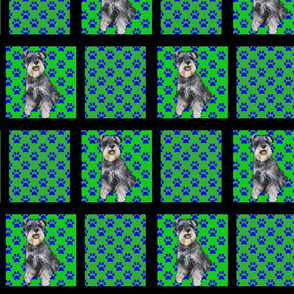 green schnauzers with black frame