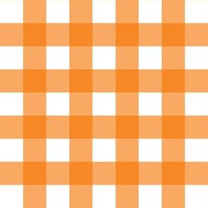 Orange Gingham - Large (Rainbow Collection)