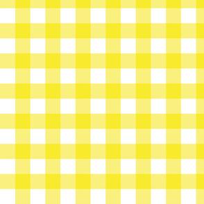 Yellow Gingham - Medium (Rainbow Collection)