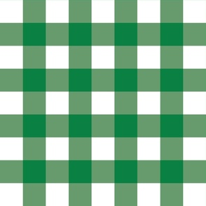 Green Gingham - Large (Rainbow Collection)