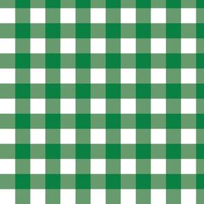 Green Gingham - Medium (Rainbow Collection)