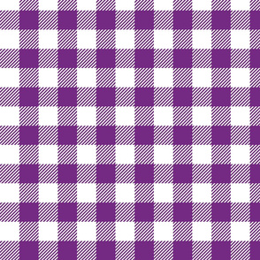 Purple Check - Medium (Rainbow Collection)