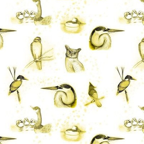 birds repeat yellow