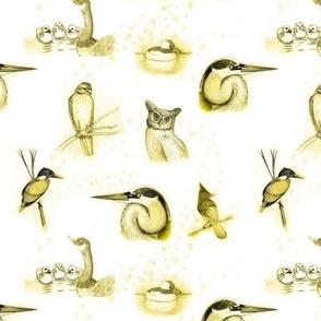 birds repeat yellow