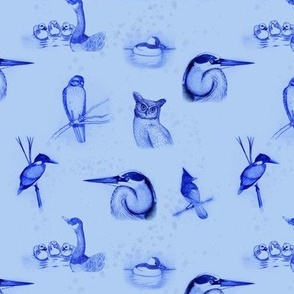 birds repeat blue