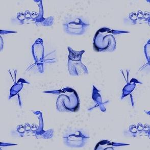 birds repeat gray