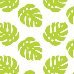 Tropical Monstera Leaves in lime green