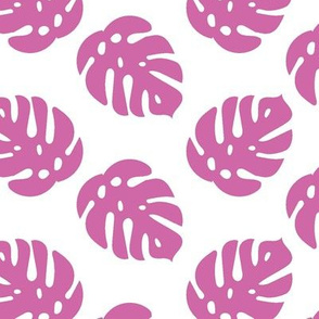 Tropical Monstera Leaves in orchid pink