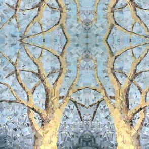 Sycamore Symmetry