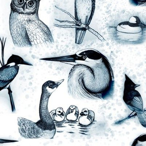 new birds repeat blue ink