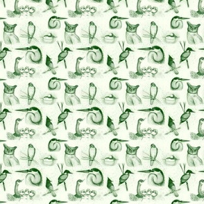 new birds repeat forest green