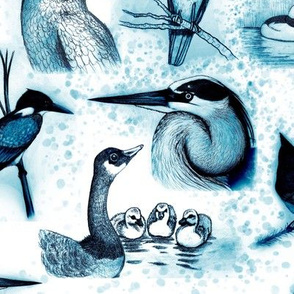 new birds repeat vivid blue ink