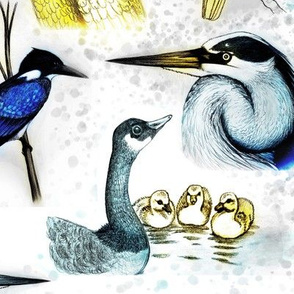 natural birds blue yellow hand drawn