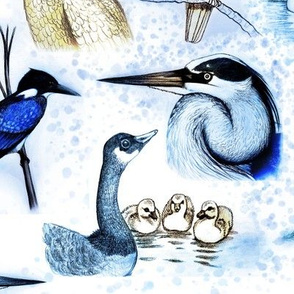new birds repeat hand color cool filter