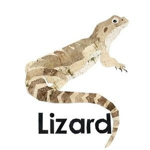 "lizard - 6"" panel"