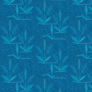 Teasels / weathered Cyan blue