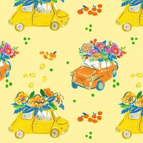 Bright Italian Cars
