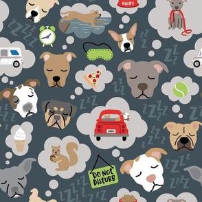 Doggie Dreams - Med Scale