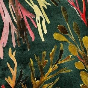 Watercolor rainbows pink