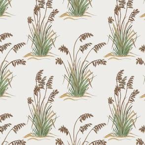Sea oats watercolor 10x10