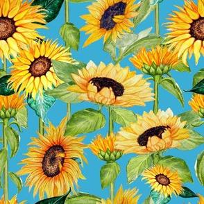 sunflowers on stalks aquarius  blue