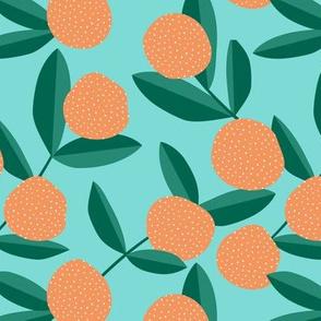 Citrus summer garden fruit and leaves botanical branch tropical spring design teal aqua orange green