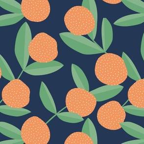 Citrus summer garden fruit and leaves botanical branch tropical spring design navy blue orange green