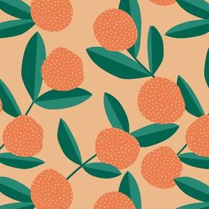Citrus summer garden fruit and leaves botanical branch tropical spring design coral neutral cinnamon orange green