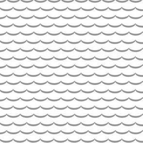 White and gray scallop