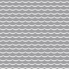 gray and white scallop