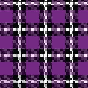 Purple Plaid - Large (Rainbow Collection)