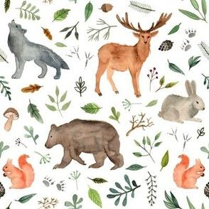 watercolor woodland animals. bigger