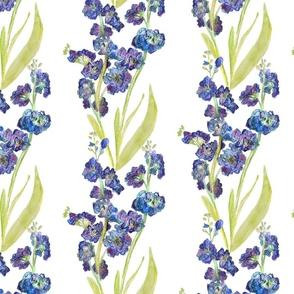 Favourite Flower, hand drawn stocks