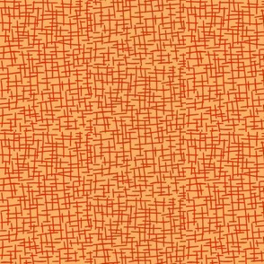 Sketchy Mesh of Tangerine on Persimmon