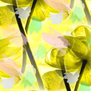 Lotus in Pastel Sky