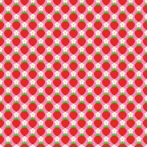 Strawberry-medium