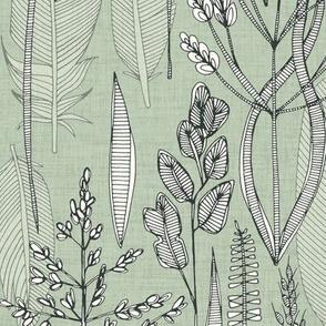meadow feathers eucalyptus