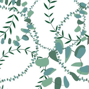Eucalyptus leaves circles