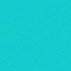 Doodle: Aqua on Teal