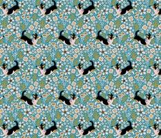 Dog's joy ❤ turquoise