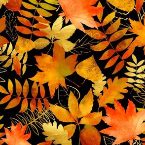 Autumn leaves on black