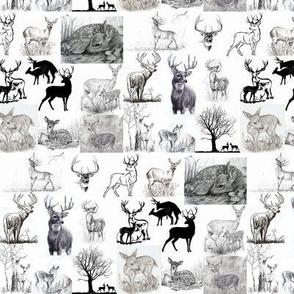 WindSwept deer collage