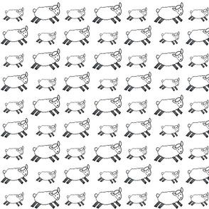 My Fruit Bowl