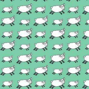 Watermellon fruit bowl