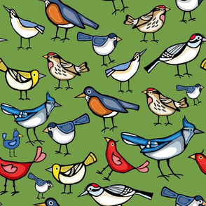 Backyard birds on green