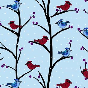 Backyard Winter Birds